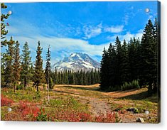 Scenic Mt. Hood In Oregon Acrylic Print by Athena Mckinzie