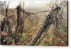 Scenic Overlook Acrylic Print by JC Findley