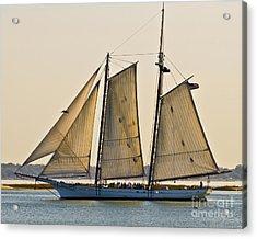 Scenic Schooner Acrylic Print by Al Powell Photography USA