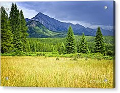 Scenic View In Canadian Rockies Acrylic Print by Elena Elisseeva