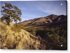Scenic View Of The Yakima Valley Acrylic Print by Sisse Brimberg