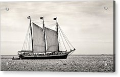 Schooner Victory Chimes 2012 Acrylic Print by Fred LeBlanc