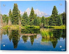 Schwabacher Landing Still Waters Acrylic Print by Greg Norrell