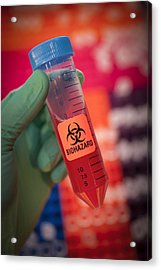 Scientist Hold A Biohazardous Sample Acrylic Print by Greg Dale