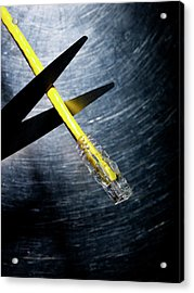 Scissors Cutting Ethernet Connection Cable. Acrylic Print by Ballyscanlon