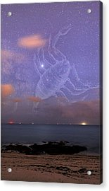 Scorpio In A Night Sky Acrylic Print by Laurent Laveder