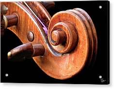 Acrylic Print featuring the photograph Scroll Detail by Endre Balogh