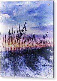 Se Oats 2 Acrylic Print by Skip Nall