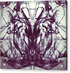 Sea Horse Acrylic Print by Sumit Mehndiratta
