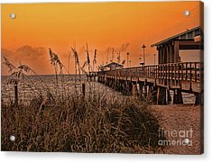 Acrylic Print featuring the photograph Sea Oats At Dawn by Anne Rodkin