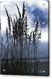Sea Oats On Tybee Acrylic Print by Leslie Revels Andrews