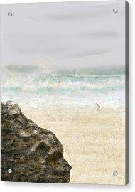 Sea Song Acrylic Print by Peri Craig