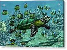 Acrylic Print featuring the digital art Sea Turtle by Walter Colvin