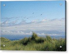Seabreezes Acrylic Print