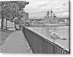 Acrylic Print featuring the photograph Seagull At The Naval And Military Park by Michael Frank Jr