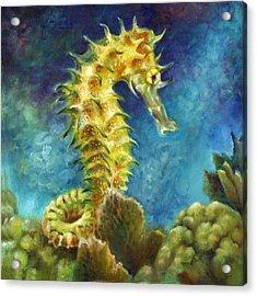 Seahorse I Acrylic Print