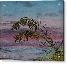 Seaoats Acrylic Print