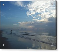 Acrylic Print featuring the photograph Searching by Sheila Silverstein