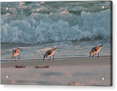 Acrylic Print featuring the photograph Seaside Trio by Charles Warren