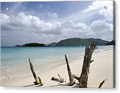 Secluded Acrylic Print