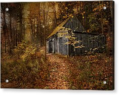 Secluded Acrylic Print by Robin-Lee Vieira