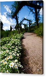 Secret Path Acrylic Print