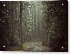Secret Pathway Acrylic Print by Christopher Kimmel