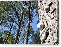 See Da Tree Acrylic Print