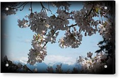 See The Cascades Acrylic Print by Lee Yang