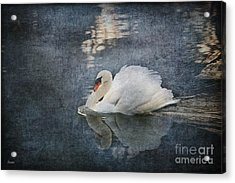 Seeing Off The Day Acrylic Print
