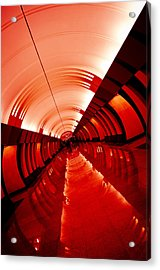 Seeing Red Acrylic Print by Mark Britten