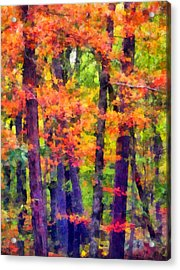 Seeing The Forest Acrylic Print by Angelina Vick