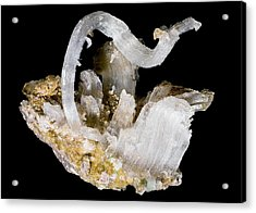 Selenite Crystals Acrylic Print