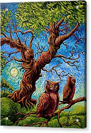 Sentient Owls Acrylic Print