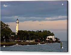 Acrylic Print featuring the photograph Sentinel by Dan Wells