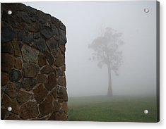 Sentinel In The Mist Acrylic Print by Sarah King