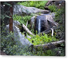 Sequoia Waterfall Acrylic Print by Anthony Citro