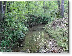 Serene Green  Acrylic Print by James Collier