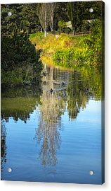 Serene Reflection Acrylic Print by Julie Palencia