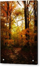 Serenity Acrylic Print by Anthony Rego