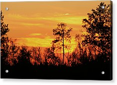 Acrylic Print featuring the photograph Setting Sun by Karen Harrison