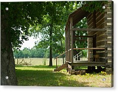 Settlers Cabin Arkansas 4 Acrylic Print by Douglas Barnett