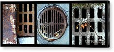 Sew Sewer Sewest Acrylic Print by Marlene Burns