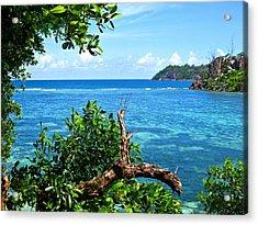 Seychelles Acrylic Print by Jenny Senra Pampin