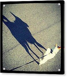 #shadow #puppy #dog #abstract Acrylic Print