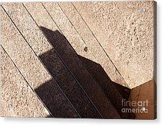 Shadow Stair Acrylic Print