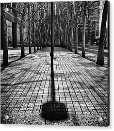 Shadows On The Ground Acrylic Print by John Farnan