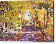 Shady Path At Fall In The Woods Acrylic Print
