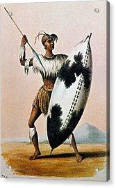 Shaka Zulu (c1787-1828) Acrylic Print by Granger