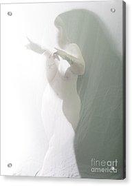 Shaped Shadows Acrylic Print by Scott Sawyer